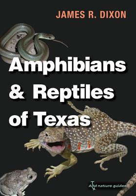 Amphibians and Reptiles of Texas By Dixon, James R./ Hibbitts, Toby J. (PHT)